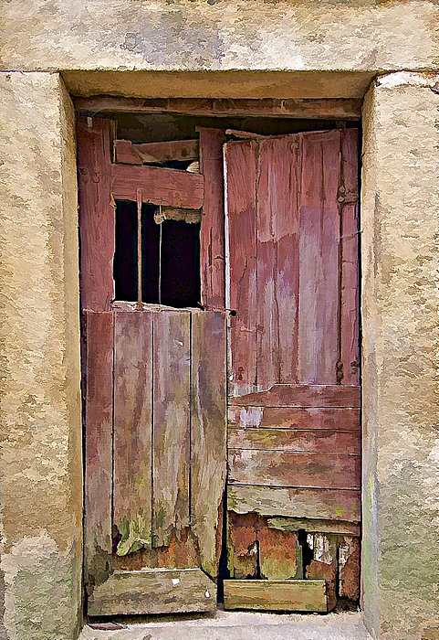 Broken Red Wood Door Print by David Letts