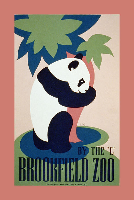Brookfield Zoo Panda Print by Unknown