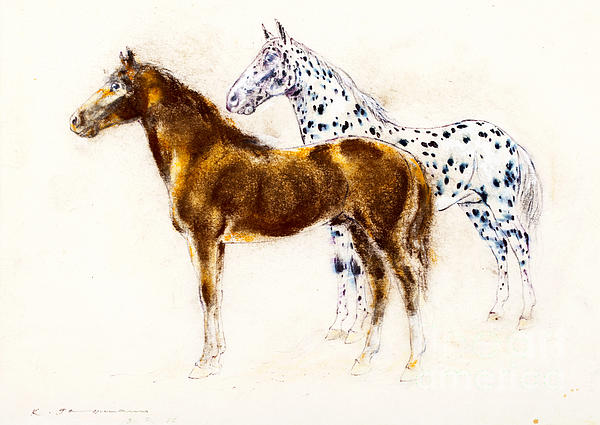 Brown And Appaloosa Horse Print by Kurt Tessmann