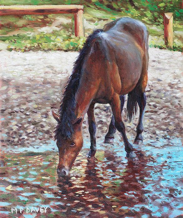 Martin Davey - Brown Horse drinking from stream