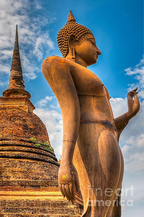 Buddha Statue Print by Adrian Evans