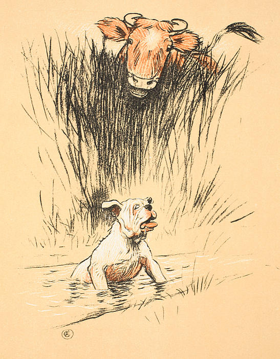Bull And Dog In Field Print by Cecil Charles Windsor Aldin
