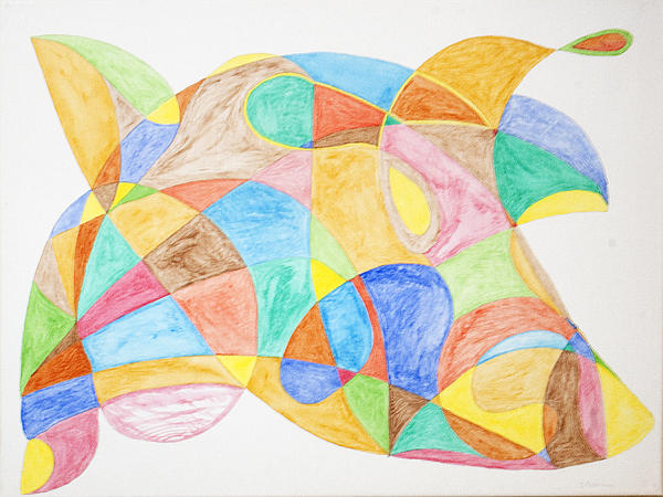 Bull Fish Car Face Print by Stormm Bradshaw