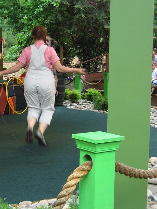 Busch Gardens - Animal Show - 121234 Print by DC Photographer