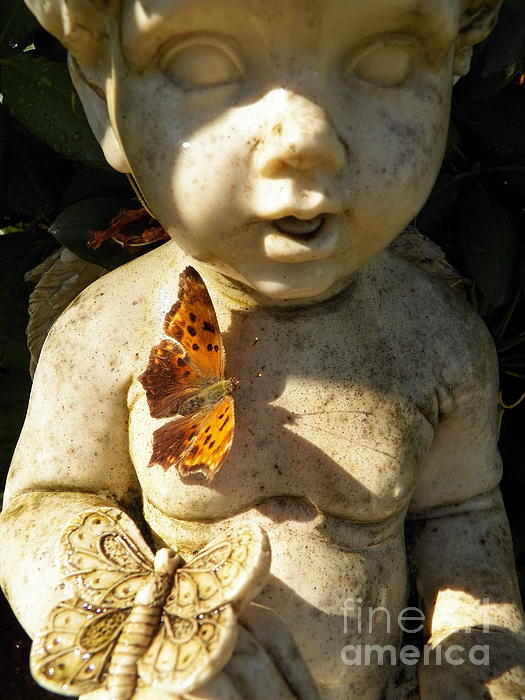 Judy Via-Wolff - Butterflies and Cherub