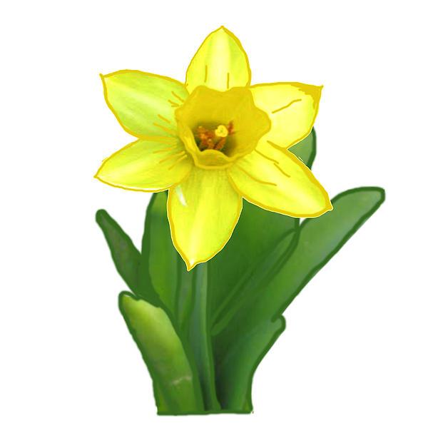 Navin Joshi - Cactus Plant Green and Yellow Elegant Flower created by  NavinJoshi