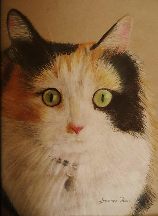 Calico Cat Print by Savanna Paine