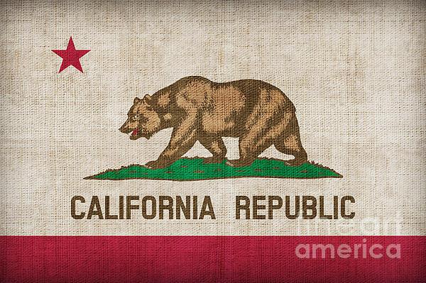 California State Flag Print by Pixel Chimp