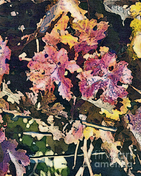 California Vineyard Series Fall Grape Leaves Print by Artist and Photographer Laura Wrede