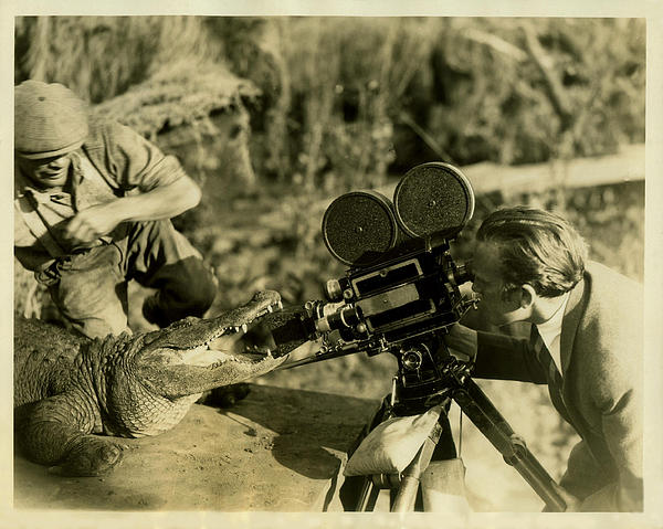 Cameraman With Alligator Print by Vintage