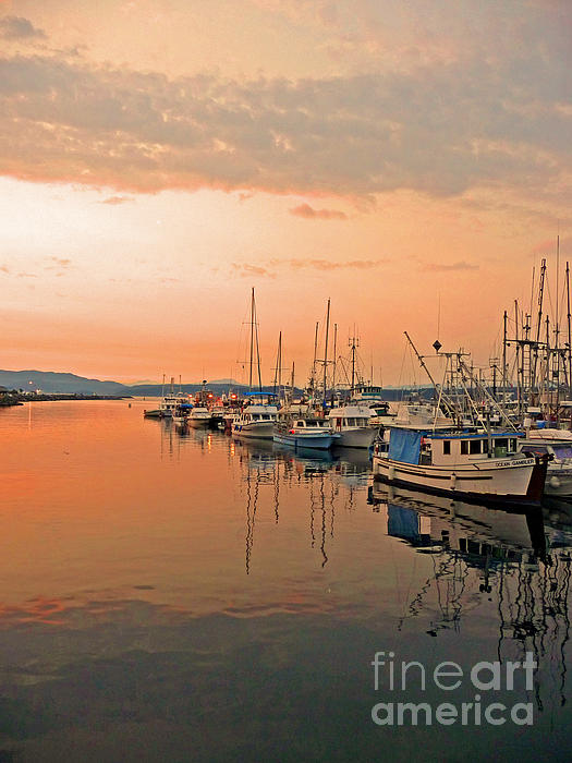 Campbell River Marina Print by Nancy Harrison