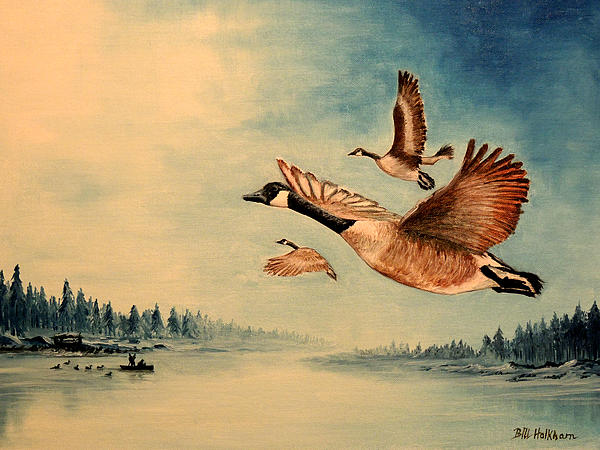Canada Geese Print by Bill Holkham