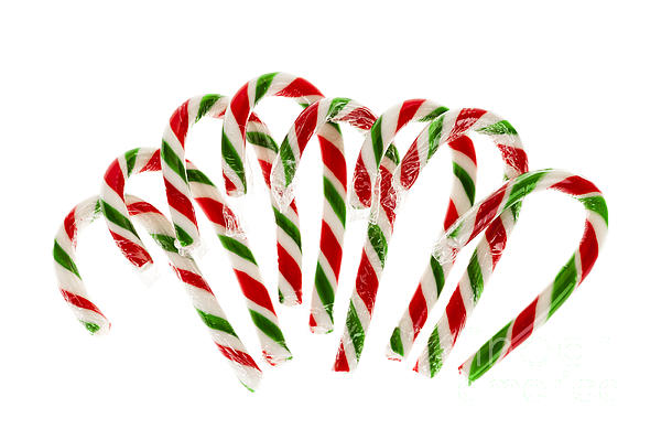 Candy Canes Print by Elena Elisseeva
