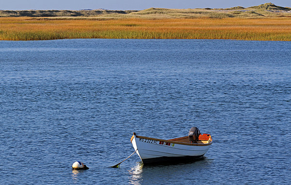 Cape Cod Charm Print by Juergen Roth