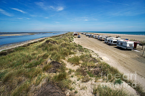 Caravans Aligned On Beach Print by Sami Sarkis