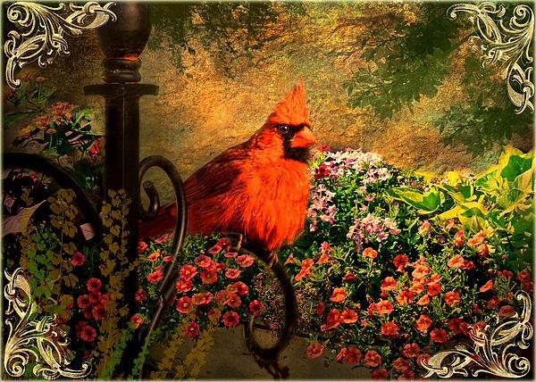Debbie Portwood - Cardinal in the flower garden photoart II