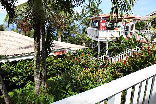 Caribbean Cruise - St Thomas - 1212209 Print by DC Photographer