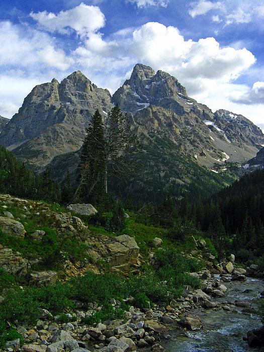 Cascade Creek The Grand Mount Owen Print by Raymond Salani III