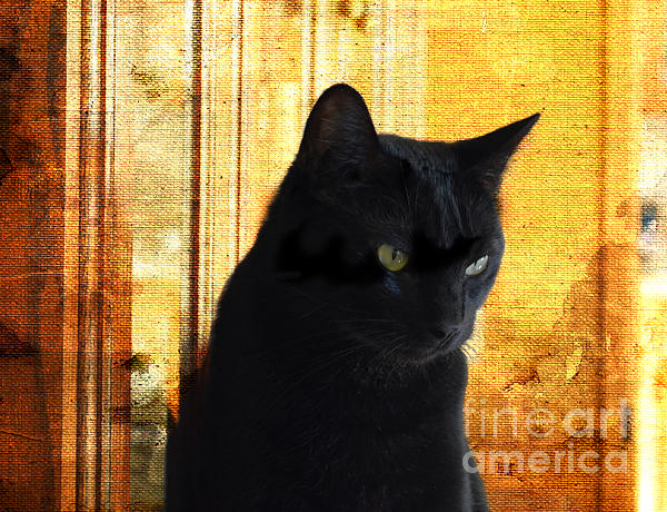 Cat In Contemplative Mood Print by Luther   Fine Art