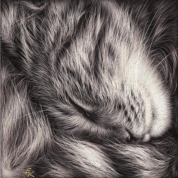 Cat Nap Print by Elena Kolotusha