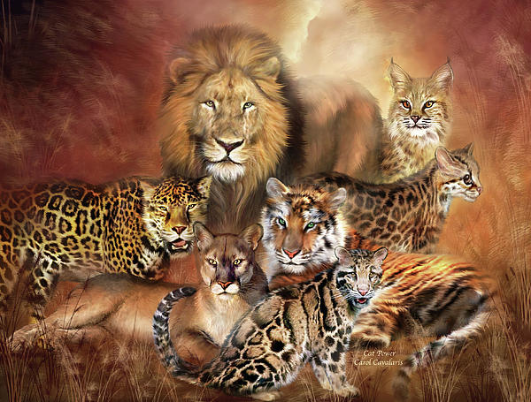 Cat Power Print by Carol Cavalaris