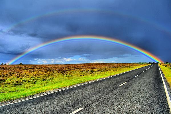 Catch The Rainbow Print by Dave Woodbridge