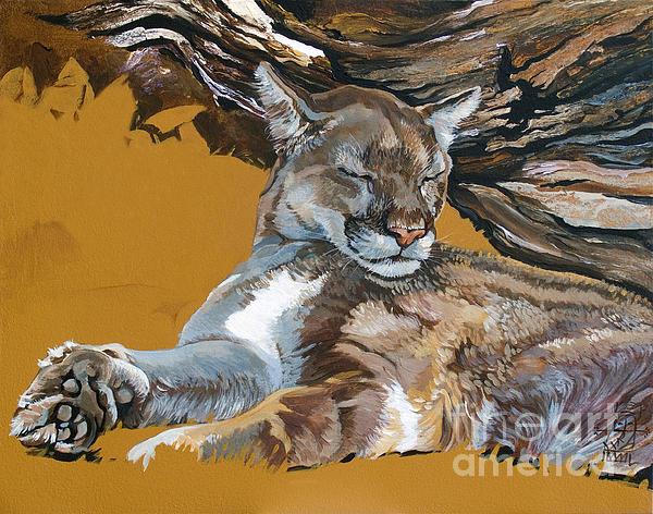 Catnap Print by J W Baker