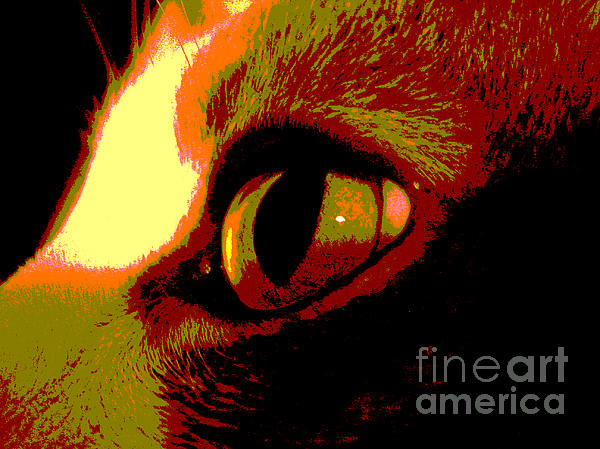 Cat's Eye Abstract  Print by Ann Powell