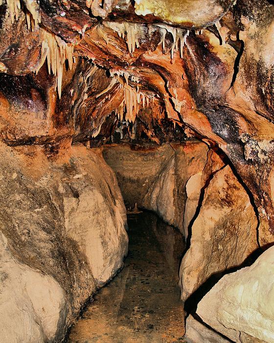 Cavern Path Print by Dan Sproul
