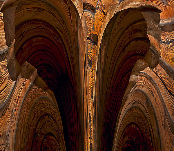 Caverns Of Wood Print by Murray Bloom