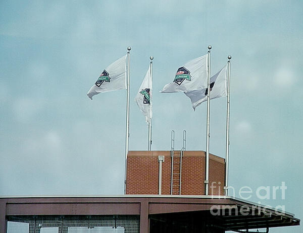 Center Field Flags Print by Terry Weaver
