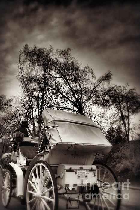 Miriam Danar - Central Park Carriage Ride 2 - Antique Appeal