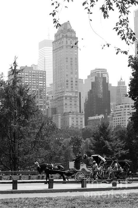 Central Park Print by Kristi Jacobsen