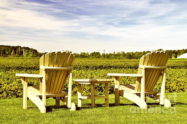 Chairs Overlooking Vineyard Print by Elena Elisseeva