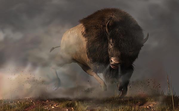 Charging Bison Print by Daniel Eskridge