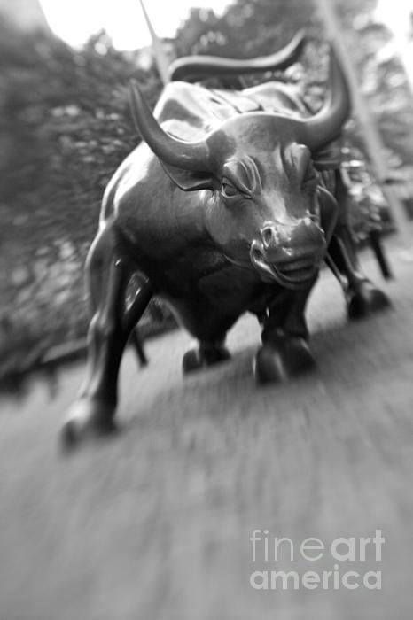 Charging Bull 2 Print by Tony Cordoza