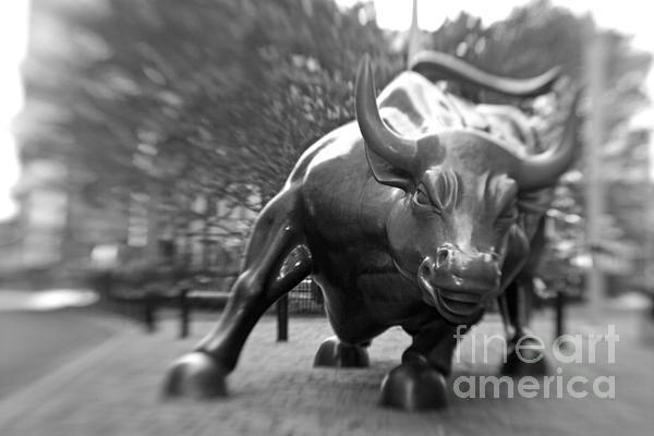 Tony Cordoza - Charging Bull 3