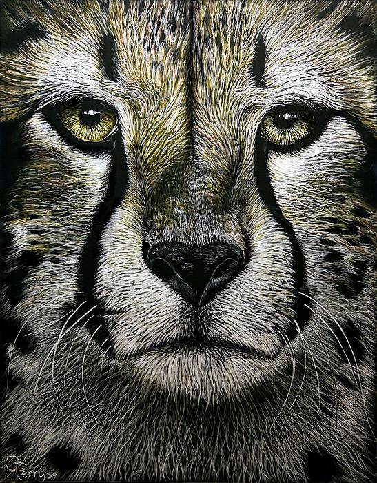 Cheetah  Print by Chris Perry