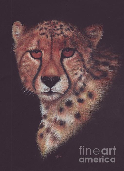 Cheetah Print by Genevieve Desy