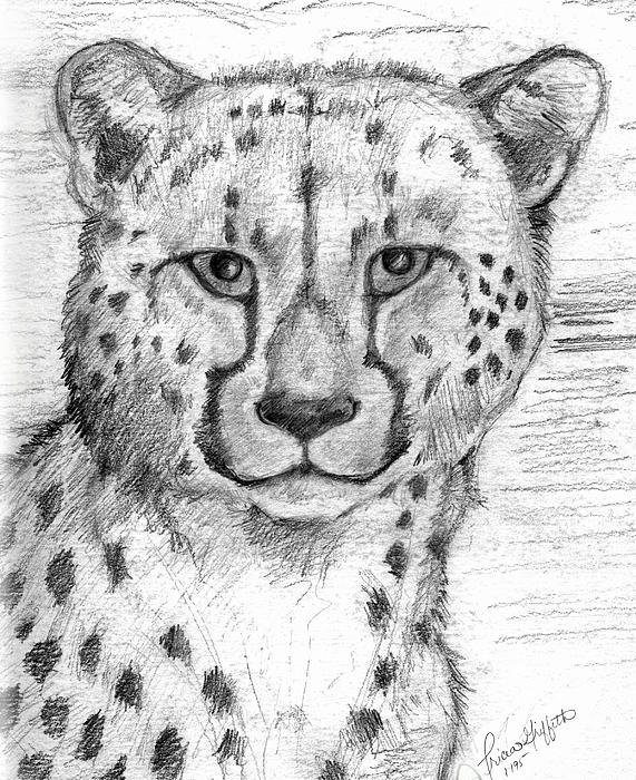 Cheetah Print by Tricia Griffith