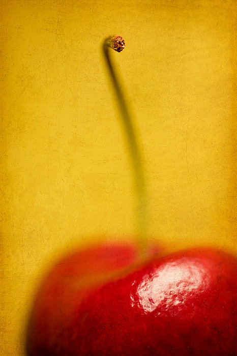 Cherry Bliss Print by Amy Weiss