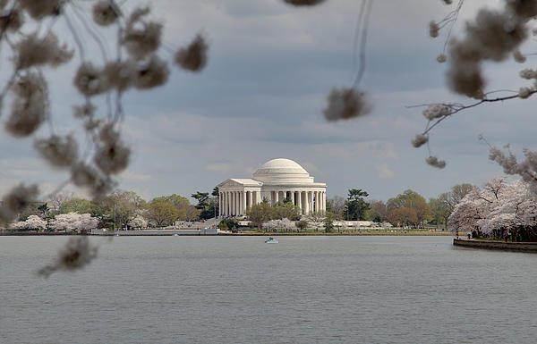 Cherry Blossoms With Jefferson Memorial - Washington Dc - 011318 Print by DC Photographer