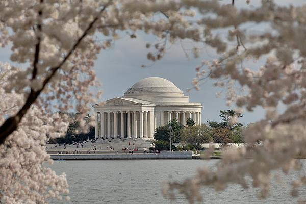 Cherry Blossoms With Jefferson Memorial - Washington Dc - 011324 Print by DC Photographer