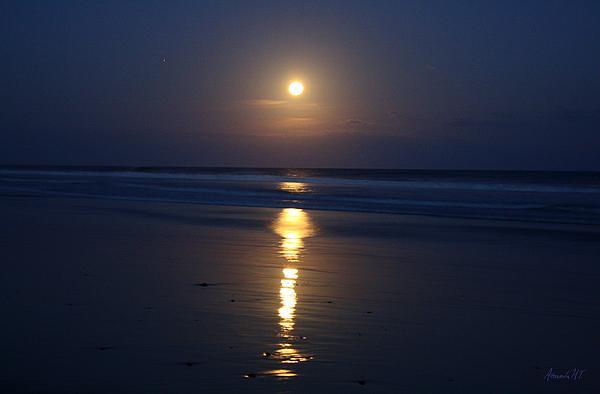 chiaro di luna Moonlight Print by Amanda Lee Tzafrir