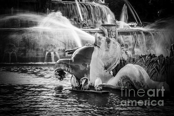 Chicago Buckingham Fountain Seahorse In Black And White Print by Paul Velgos