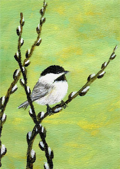 Kathleen McDermott - Chickadee On Pussy Willow - Bird 1