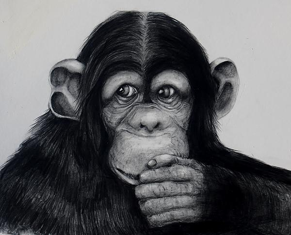 Chimp Print by Jean Cormier