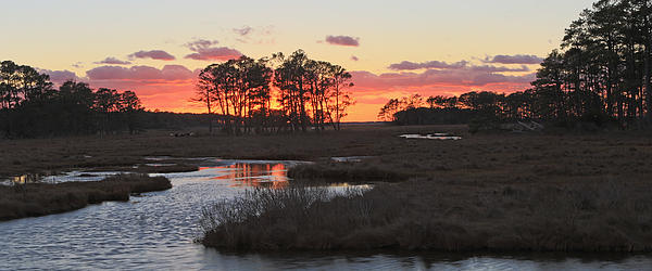 Chincoteague Island Sunset Print by Jack Nevitt