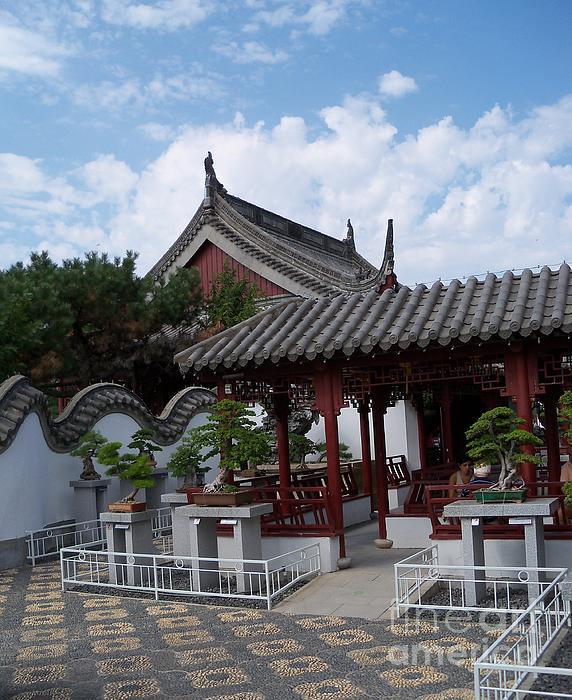 Lingfai Leung - Chinese Bonsai Garden