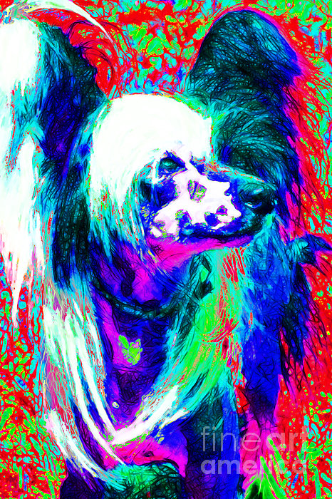 Chinese Crested Dog 20130125v3 Print by Wingsdomain Art and Photography